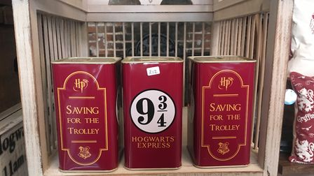 Save your fare for the Hogwarts Express Picture: SOPHIE BARNETT