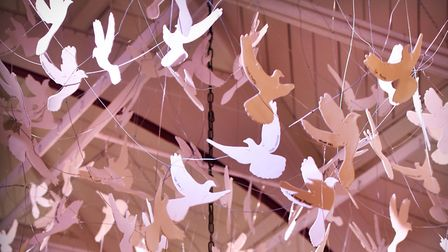 The Ipswich School doves. Picture: JAMES FLETCHER PHOTOGRAPHY