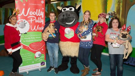 The launch of the Wooly Pully week Picture: ST ELIZABETH HOSPICE
