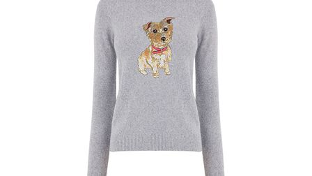 The Oasis jumper featuring Flora, who was cared for by the Blue Cross in Suffolk Picture: OASIS