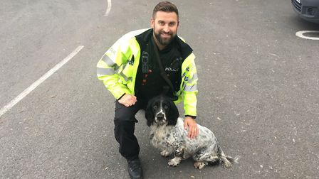 Rigsby the drug dog with his handler PC Chris Squirrell Picture: ARCHANT