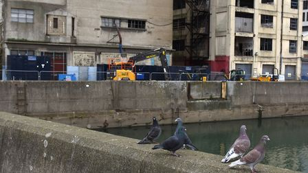 Work has begun on St Peters Wharf in Ipswich Picture: SARAH LUCY BROWN