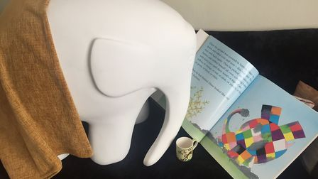 Young Elmer will be taking centre stage for a book group event. Picture: HANNAH MEE/IPSWICH CHILDREN