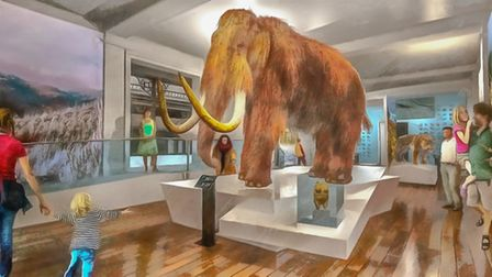 Augmented reality and video projections are among the ideas proposed for Ipswich Museum Picture: IPS