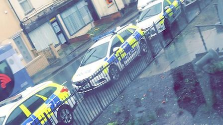Police cars on Woodbridge Road Picture: CONTRIBUTED