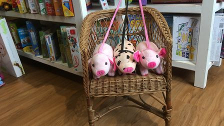 Unusual donated items at the new St Elizabeth Hospice shop, - a child's wicker chair Picture: DAVI