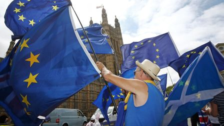 Anti-Brexit demonstrators campaign opposite the Houses of Parliament in London. Photograph: Yui Mok/