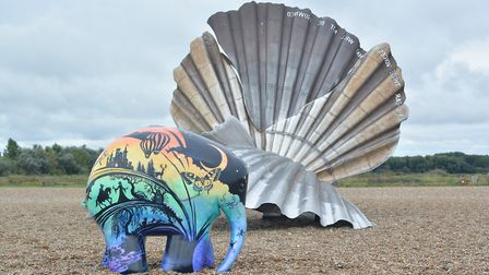 The Imagination Can Take You Anywhere Elmer on Aldeburgh beach Picture: ADRIAN RAWLINSON