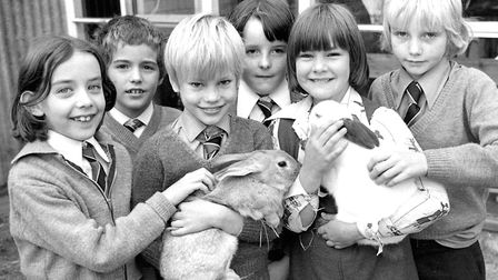 Pupils at Downing Primary School (now The Willows Primary) Ipswich, with the schools pet rabbits in
