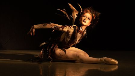 House of Birds by Ballet Central Picture: AMBER HUNT