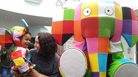 Elmer Day at Gainsborough Community Library in Ipswich was a mammoth success. Picture: RACHEL EDGE