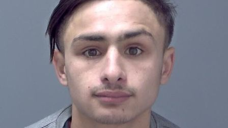 Moise Sandu, 19, of Spencer Place, Leeds, was sentenced to 11 months in a young offenders insitituti