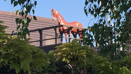 The mystery horse on the roof of the Princes Street fire station in Ipswich Picture: SUZANNE DAY