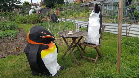 A couple of penguins trying to chill out in the hot temperatures in Ipswich this weekend Picture: R