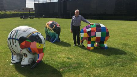 Elmer's Big Parade Suffolk campaign manager, Norman Lloyd with a selection of Elmers ahead of the su