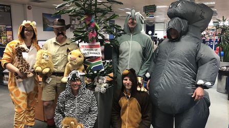 The IT team went of a safari trip in South Africa. The competition gave a hint to the theme of Fred.