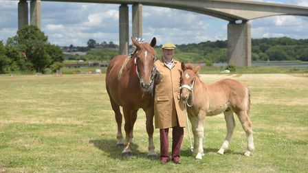 George Last with his Suffolk Punches at the Suffolk Food Hall Picture: SARAH LUCY BROWN