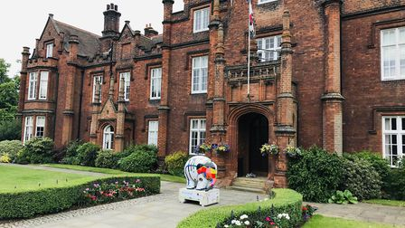Elmer Armstrong can be found outside Ipswich School in Henley Road Picture: IPSWICH SCHOOL