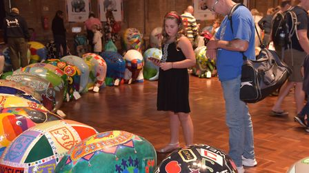 All the Elmers on display in Ipswich Town Hall for their farewell event. Picture: Sonya Duncan