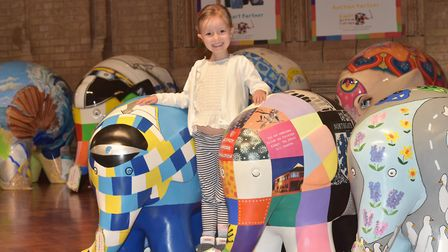 Esmae Leggett with the Elmers on display in Ipswich Town Hall. Picture: Sonya Duncan