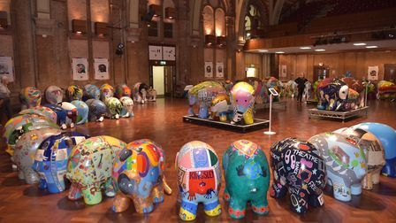 All the Elmers on display in Ipswich Town Hall for their farewell event. Byline: Sonya Duncan Copyri