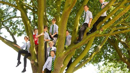 The Royal Hospital School has pledged to plant a tree for every pupil. Picture: MIKE KWASNIAK