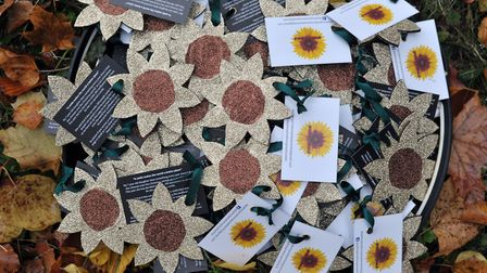 Dejah Robinson has handmade 200 sunflowers as an act of kindness to to see how far she can spread a