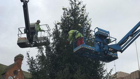 The tree, which came from Elveden Forest, takes two days to decorate Picture: VICTORIA PERTUSA