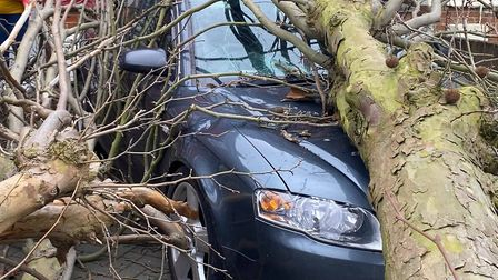 An Audi in Nacton Road, Ipswich was badly damaged by a fallen tree this morning Picture: JOHN DODDS