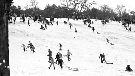 Crowds gather at the hills of Christchurch Park to enjoy the snow Picture: ARCHANT