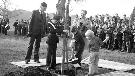 The Boys' Brigade turned out in force to plant trees at Christchurch Park Picture: IVAN SMITH
