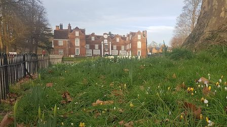Christchurch Mansion is closed but people can still go for a walk in the park. Picture: ARCHANT