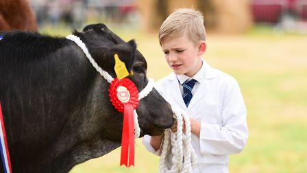Ben Ketley in the young handlers class at Hadleigh Show 2019 Picture: SARAH LUCY BROWN