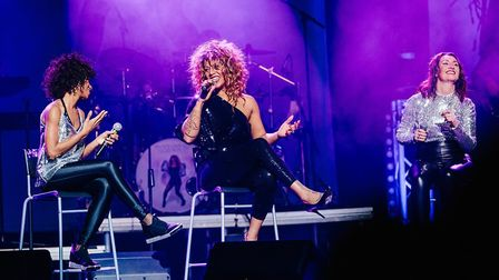 TheTina Turner tribute show What's Love Got To Do With It has rescheduled its date at the Ipswich Re