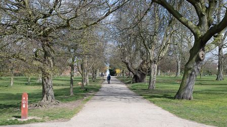 The play area in Christchurch Park will see its 10-week upgrade begin while it is already closed fro