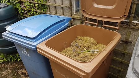 Ipswich Council is to start emptying brown bins again from May 11. Picture: PAUL GEATER
