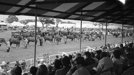 View of the grand parade in the main ring from the stands at the Suffolk Show, 1972 Picture: RICHAR