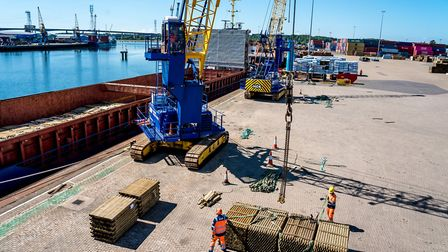 Timber discharge from General Cargo Ship Roseburg at ABP's Port of Ipswich, on June 15 Picture: ST