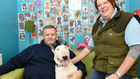 Clare and Danny Holmes opened Ipswich Dog Day Care Creche two years ago. They are pictured here with