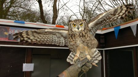 MYCA Falconry group is holding the event