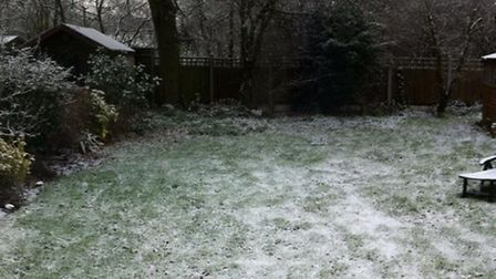 Colin Grainger took this winter scene of his garden in Beauly Way, Rise Park