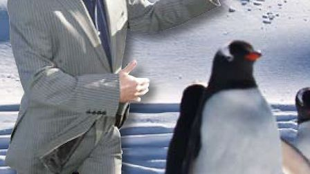 Kevin hopes to find a partner - other than a penguin - on his trip