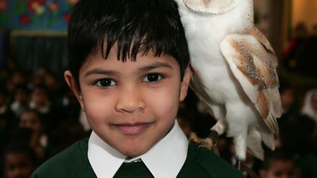 A nature expert called The Bird Man is at the Highlands Primary School, to show owls to the children