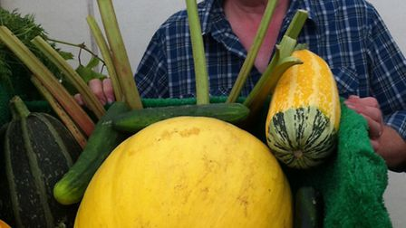 Tom Keeper of the Hornchurch and District Allotment Society demonstrates what you could grow