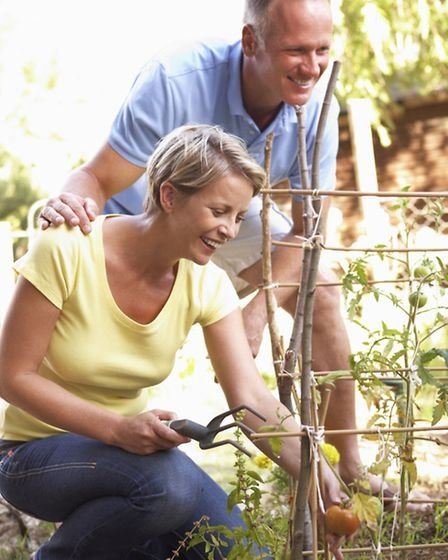 The average allotment needs to be tended around 200 hours a year. Picture: PA Photo/thinkstockphotos
