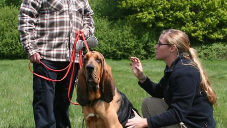 Steve Cleary with his bloodhound, Reebus, and INBTI instructor, Opal Kocher