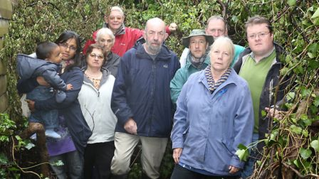 Trees have been cut back harming endangered birds and wildlife that live on the edge of the allotmen
