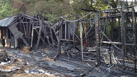 Two horses died in a blaze
