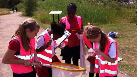 Children from Ravenscroft Primary School got closer to nature on a bug hunt