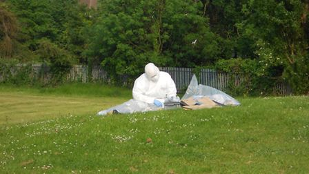 Forensics work being carried out in the field in Woodford Green where Luke's body was found